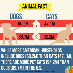 While more American households include dogs (60.2M) than cats (47.1M), there are more pet cats (94.2M) than dogs (89.7M) in the U.S.