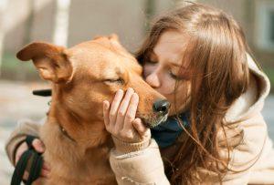 dog_and_human