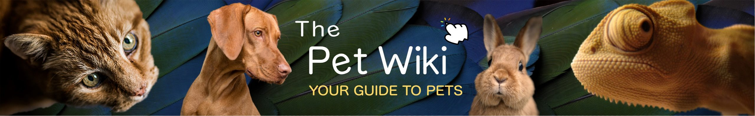 The Pet Wiki