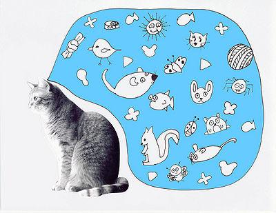 Cat Think