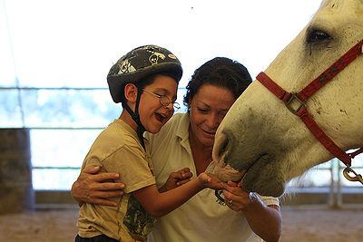 Horse Treat