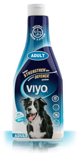 Viyo Adult Dog