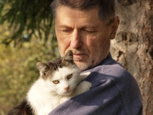 Man cat.jpg