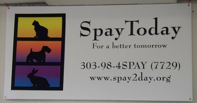 Spay Day